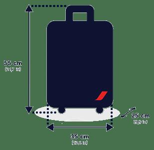 Ручная кладь Air France