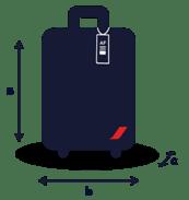 Регистрируемый багаж Air France
