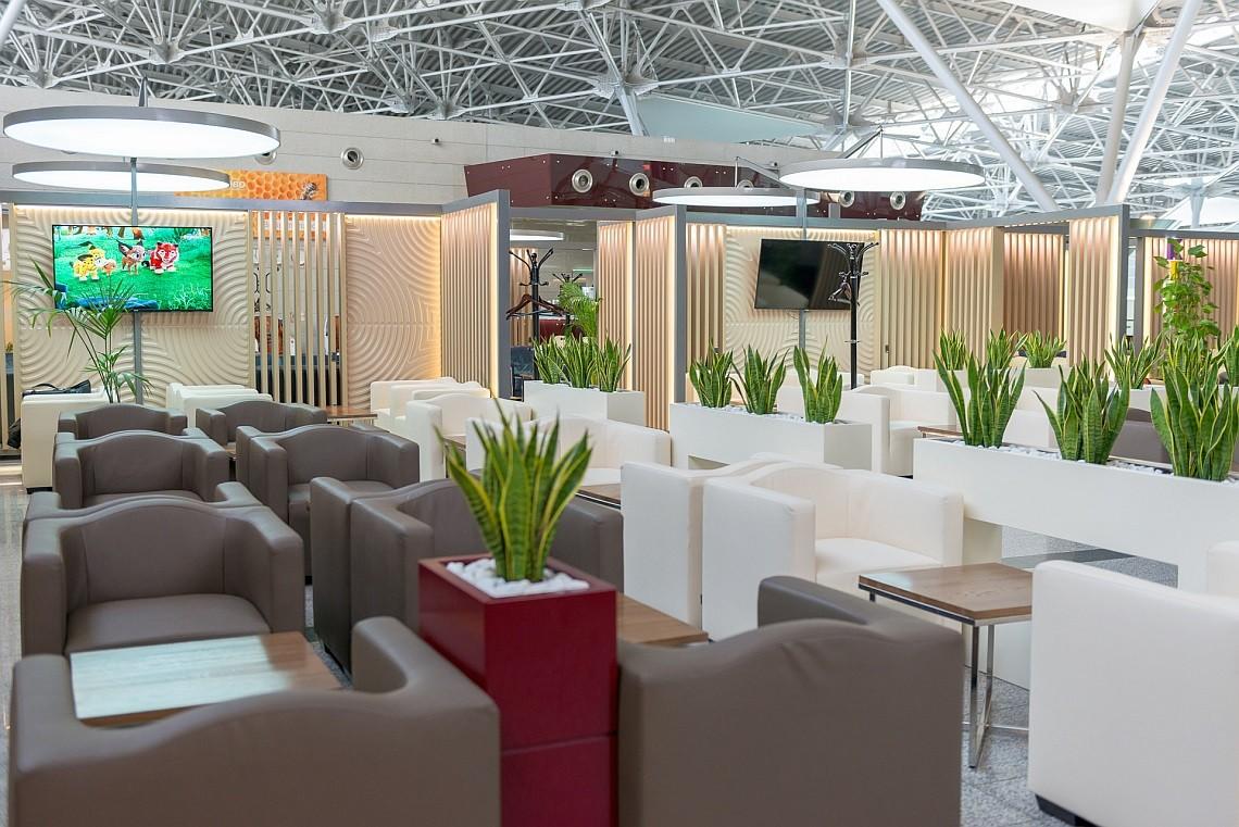 ВИП-зал в аэропорту Внуково