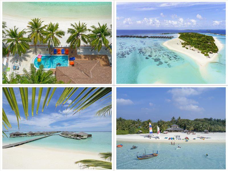 Отель Paradise Island Resort & Spa 5 звезд